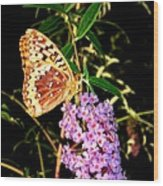 Butterfly Banquet 2 Wood Print