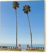 Butterfly Beach, Santa Barbara Wood Print