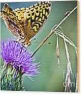 Butterfly Beauty And Little Friend Wood Print