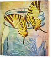 Butterfly Blue Glass Jar Wood Print