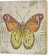 Butterfly Daydreams-c Wood Print