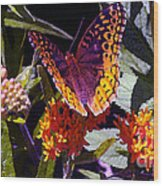 Butterfly Don't Fly Away Wood Print