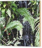 Butterfly Farm - Phuket Thailand - 011338 Wood Print