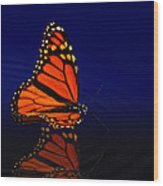 Butterfly Floats Wood Print