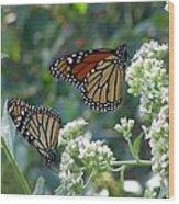 Butterfly Garden - Monarchs 01 Wood Print