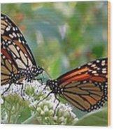 Butterfly Garden - Monarchs 17 Wood Print