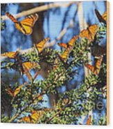 Butterfly Goodbye Wood Print