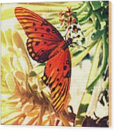 Butterfly II Wood Print