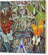 Butterfly In Cappella Sistina Sistinechapel Wood Print