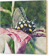 Butterfly In Flower Wood Print