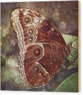 Butterfly In My Garden Wood Print