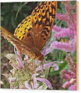 Butterfly In The Garden Wood Print