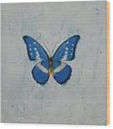Butterfly Wood Print by Michael Creese