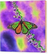Butterfly - Monarch - Photopower 1551 Wood Print