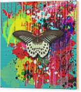 Butterfly Montage Wood Print by Gary Grayson