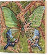 Butterfly Mosaic 03 Elena Yakubovich Wood Print by Elena Yakubovich