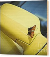 Butterfly On Sports Car Mirror Wood Print