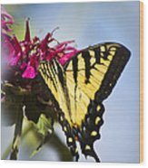 Butterfly Out Of The Blue - Blue Butterfly Art Wood Print