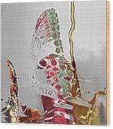 Butterfly Wood Print by Soumya Bouchachi