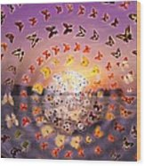 Butterfly Sunset Wood Print