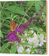 Butterfly Surprise Wood Print