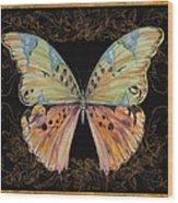 Butterfly Treasure-sofia Wood Print
