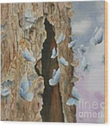 Butterfly Tree Wood Print by Paula Marsh