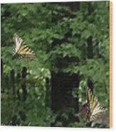 Butterfly Waltz Wood Print