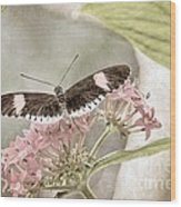Butterfly Whisper Wood Print