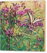 Butterfly Wildflower Wood Print