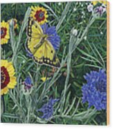 Butterfly Wildflowers Spring Time Garden Floral Oil Painting Green Yellow Wood Print