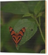 Butterfly With A Heart Wood Print