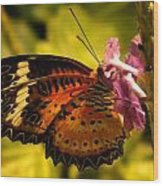 Butterfly With Flower Wood Print