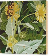 Butterfly Yellow  Wood Print