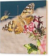 Butterfly's Friend Wood Print