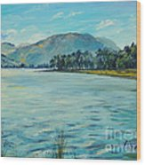 Buttermere Haystacks And Beyond Wood Print