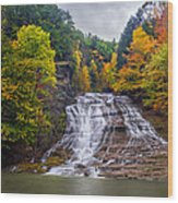 Buttermilk Falls Wood Print by Mark Papke