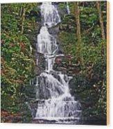 Buttermilk Falls Wood Print by Sheila Savage