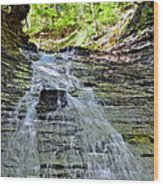 Butternut Falls Wood Print by Frozen in Time Fine Art Photography