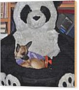 Button And The Panda Bear Wood Print