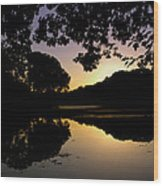 Buttonwood Sunset Wood Print