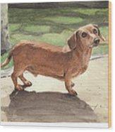 Buzz The Dachshund Watercolor Portrait Wood Print