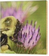 Buzzy Bee Wood Print