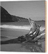 Bw Driftwood Wood Print