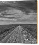 Bxw Gravel Vanishing Point Wood Print
