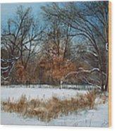 By Rattlesnake Creek Wood Print