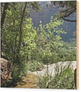 By The Emerald Pools - Zion Np Wood Print