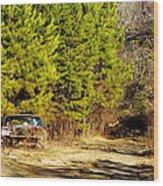 By The Roadside Wood Print