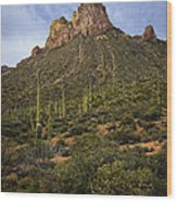 Byous Butte Wood Print
