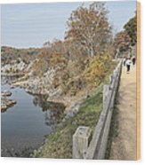 C And O Canal Above And Potomac River Below Wood Print